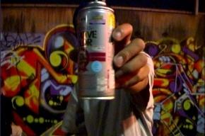 Школьник-граффитист ослепил полицейского краской из баллончика