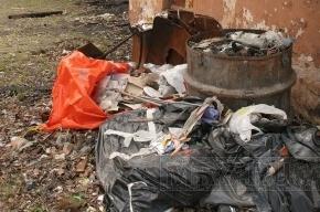 В Купчино появится мусорный монстр, «кот» и «улитка»