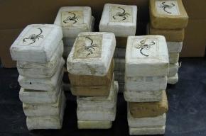 Жители Петербурга пытались привезти из Испании 9 кг кокаина