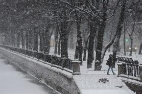 В Петербурге ждут сильный ветер и мокрый снег