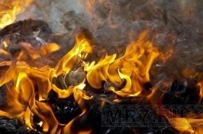 В Петербурге «Газель» сгорела во время пожара в автосервисе