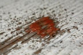 На проспекте Ветеранов иномарка насмерть сбила пожилую женщину