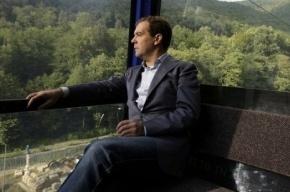 Полиция не принимает участия в поисках кота Дмитрия Медведева
