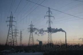 В пригороде Петербурга без света остались более 400 домов