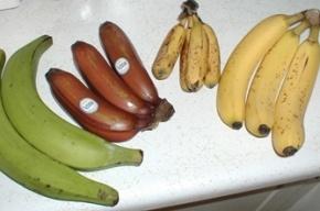 В Петербурге цены на бананы бьют рекорды из-за банкротства компании Кехмана