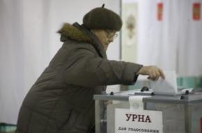 На выборы в Петербурге пришла лишь половина избирателей