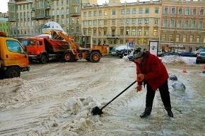 В выходные в Петербурге ожидаются обильные снегопады