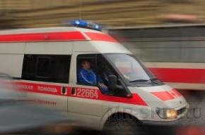 На проспекте Художников 10-летнюю девочку сбили на зебре