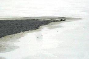 Водолазы вытащили из Волги тело пилота вертолета, упавшего в воду