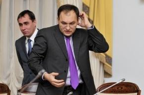 Эсеры отругали вице-губернатора Метельского в парламенте Петербурга