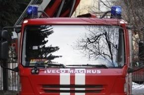 Из-за VIP-кортежа в Москве встала машина спасателей, ехавшая к детям