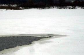 В Нижнем Новгороде вертолет рухнул в Волгу в 150 метрах от берега (фото)