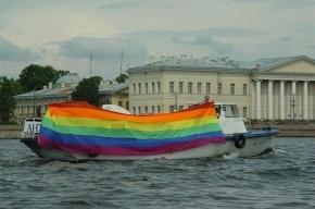 Сторонники «закона о геях» устроили пикет перед зданием ЗакСа