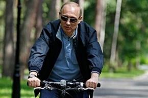 Россияне сравнили Путина с Папой Карло, а Прохорова – с Буратино