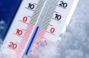 На выходных в Петербурге и Ленобласти будет около 0°C