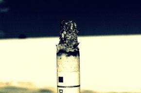 Онищенко по ночам снятся легкие курильщика