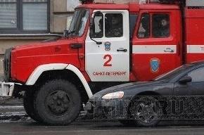 В окно общежития в Петербурге закинули бутылку с зажигательной смесью