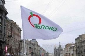 В Петербурге руководящие органы местного «Яблока» приостановили работу