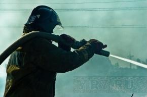 Пожар на судоремонтном заводе в Петербурге потушили, затопив док