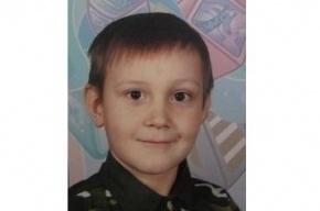 Мальчика, похищенного в Пермском крае из детсада, объявили в федеральный розыск
