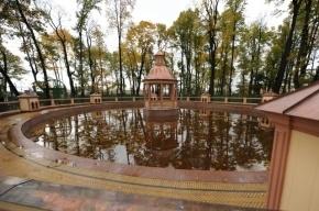 Министерство культуры даст денег на реставрацию зданий петровской эпохи