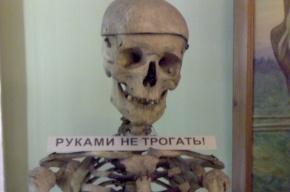 На берегу реки Волковки в Петербурге нашли два трупа