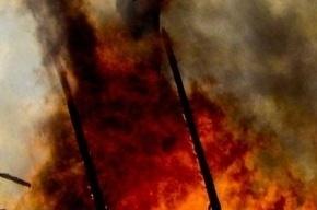 Семья из девяти человек погибла на пожаре