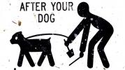 Фоторепортаж: «туалеты для собак»