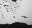 Фоторепортаж: «НЛО»