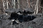 грязный снег: Фоторепортаж