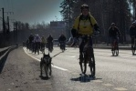 Велосипеды в Петербурге: Фоторепортаж