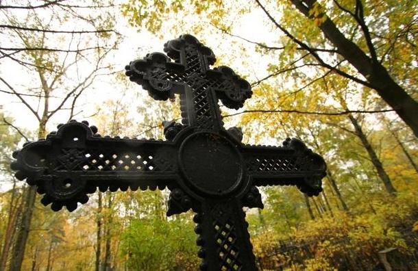 РПЦ перекроет петербуржцам вход в  Муринский парк