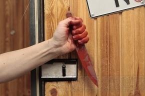 В Стрельне хулиган набросился на участкового с ножом