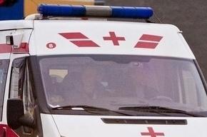 Полиция выясняет причины ДТП с автобусом, где погибли семь туристов