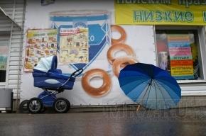 Полиция Подмосковья нашла младенца, похищенного из коляски, у матери