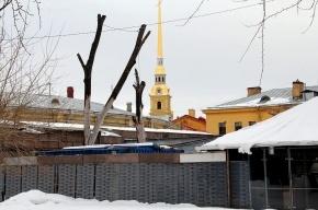 Над Петропавловской крепостью клубится дым, горит ресторан