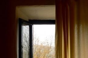 В Петербурге малолетние дети один за другим выпадают из окон вместе с москитными сетками