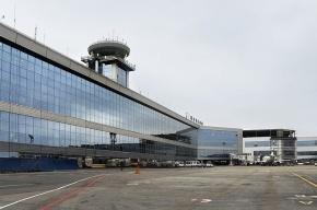 Аэропорт Домодедово решили не наказывать за теракт