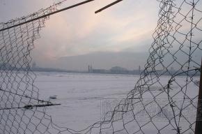 В Финском заливе нашли вмерзший в лед труп лыжницы