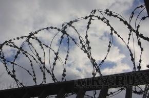 Обвиняемые в рабстве на ферме матери Цапка отправились в колонию