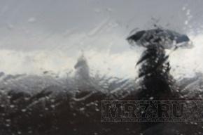 В Петербурге разгул стихии, ветер валит деревья