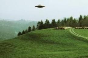Военные опознали «неопознанные» летающие объекты над Петербургом