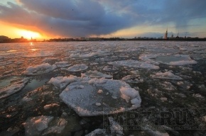 Пьяный петербуржец на спор проплыл по Неве на льдине