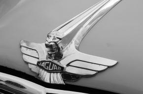 Jaguar выпустит новый спортивный автомобиль – первый за 40 лет