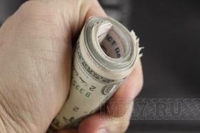 В год из российского бюджета крадут десятки миллиардов рублей