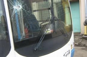 В Петербурге пьяные гопники остановили троллейбус и избили водителя-стажера