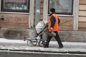 Петербург будут пылесосить и намыливать