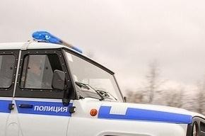 МВД Осетии опровергает информацию о задержании террористки-смертницы