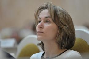 Полиция пытается подставить губернатора Петербурга, считает местный депутат