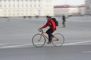 Петербург превращают в велостолицу России, уже летом появятся велопарковки